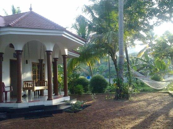 Coconut Creek Farm and Homestay: View