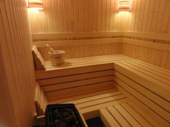 Radina's Way Hotel: Sauna