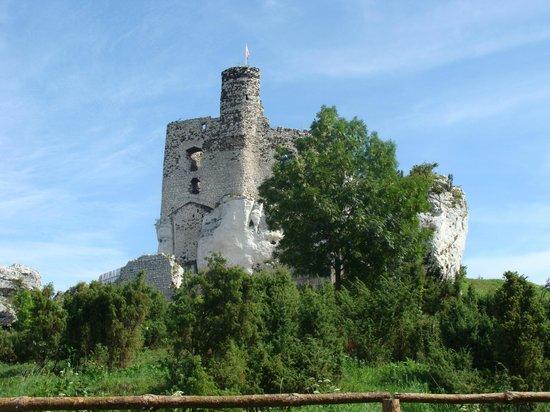 Mirow Castle Ruins