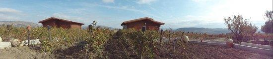 Sant'Angelo Muxaro, Italy: bungalow