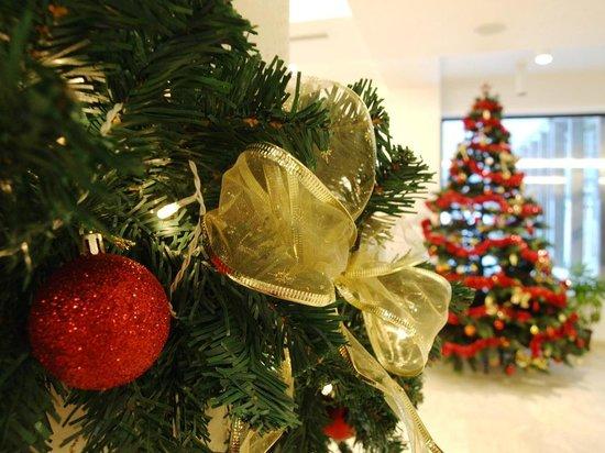 Radina's Way Hotel : Christmas Decoration