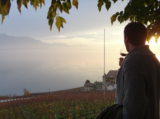 Swiss Riviera Wine Tours: Enjoying wine at the Fonjallaz family vinyard