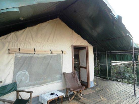 The Machan: Canopy Machan