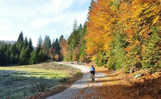 Huck Finn Adventure Travel - Day Trips: Cycling in the Mreznica River area