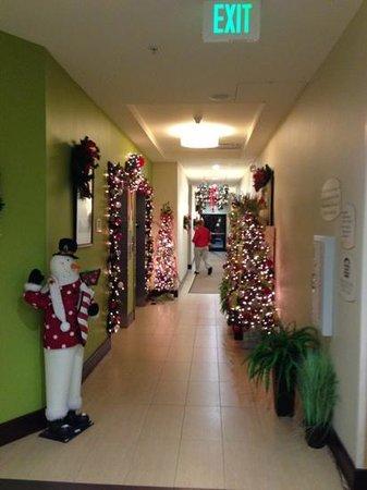 Fairfield Inn & Suites Elkin Jonesville: first floor elevator landing. all landings were decorated for holidays.