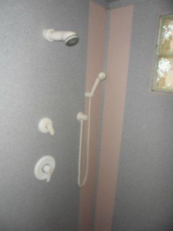 Hotel Marignan: Shower