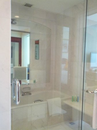 Park Hyatt Saigon: shower