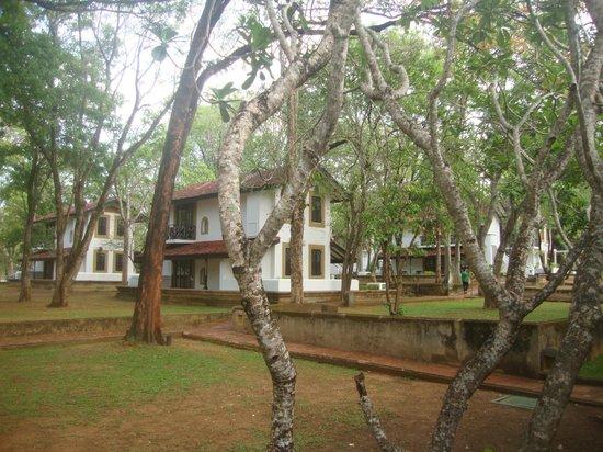 Cinnamon Lodge Habarana: Территория