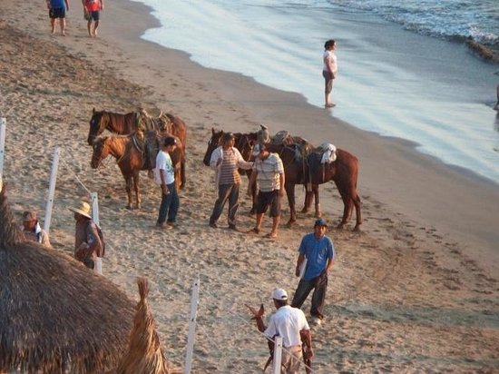 El Cid Castilla Beach Hotel: Anyone for horseback riding on the beach?
