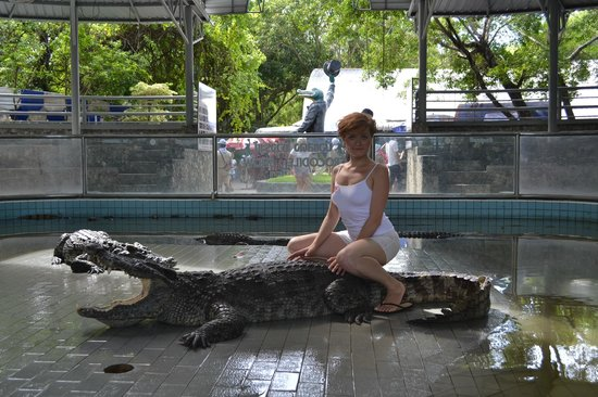 Riding on a crocodile ) - Picture of Million Years Stone Park & Pattaya C...