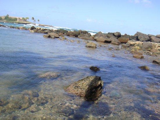 Caribe Hilton San Juan: beautiful ocean! 