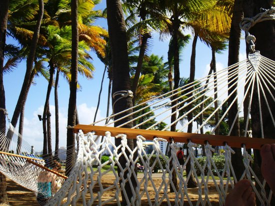 Caribe Hilton San Juan: amazing naps in the hammocks