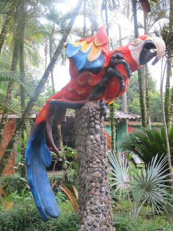 Hotel Rustico de Playa Perla Negra: Entrée de l'hôtel