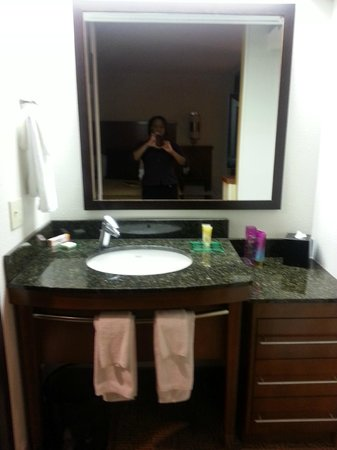 Hyatt Place Kansas City Airport: Vanity/sink area.