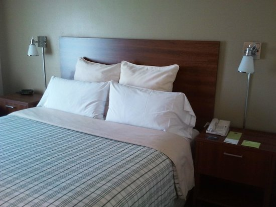 Four Points by Sheraton Los Angeles International Airport: letto