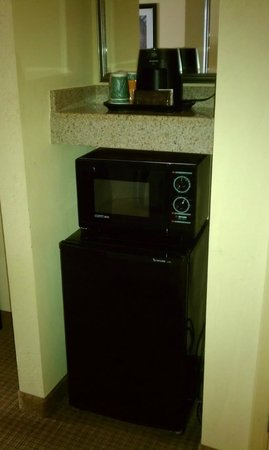 Wingate by Wyndham Chantilly / Dulles Airport: Fridge & Microwave
