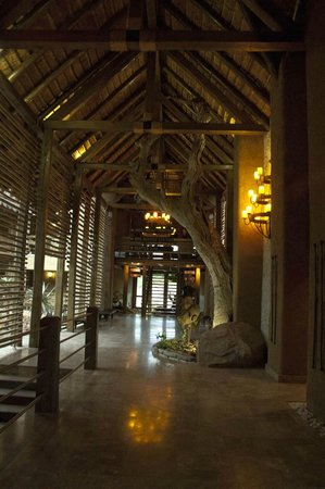 Kapama River Lodge: Hall