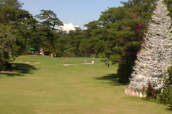 Baguio Country Club: Golf course and stick Christmas tree.