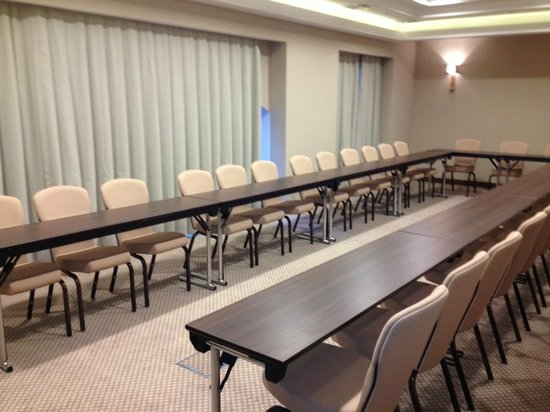 Radisson Blu Hotel, Kyiv Podil: Another conference room