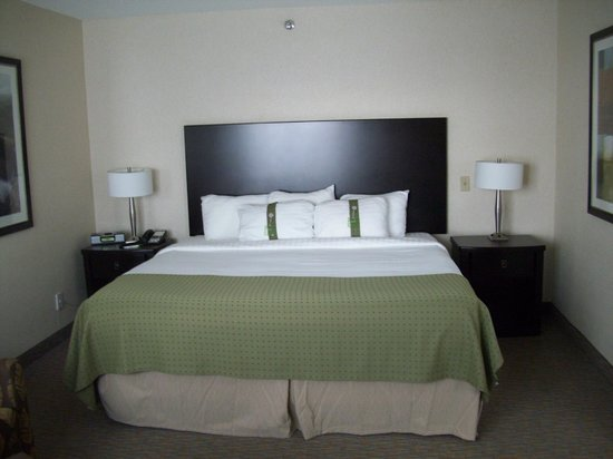 Holiday Inn Sydney Waterfront: king bed