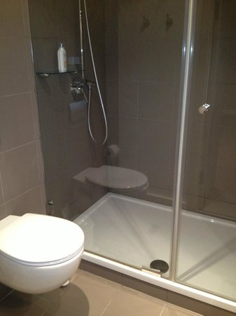 ibis Kiev City Center: Shower