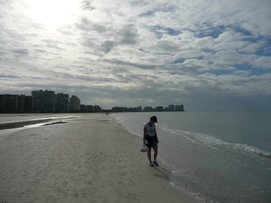 Hilton Marco Island Beach Resort: shelling in the morning