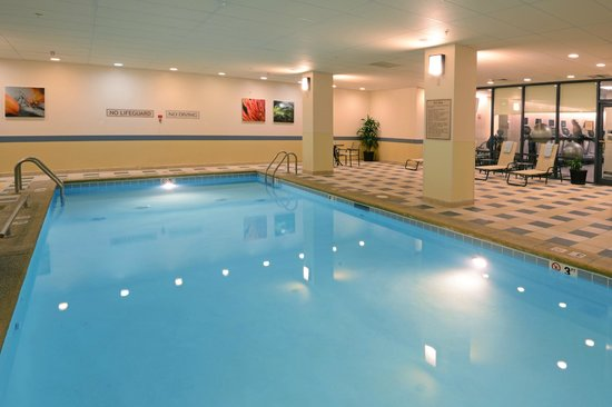 Denver Marriott South at Park Meadows: Indoor Pool