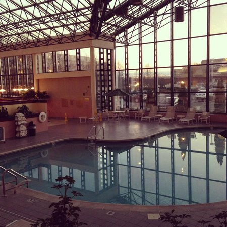 Melville Marriott Long Island: Indoor Pool