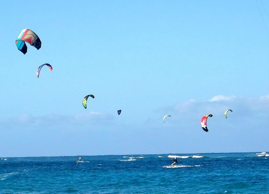 Kite Beach Inn: View of kites from the beach