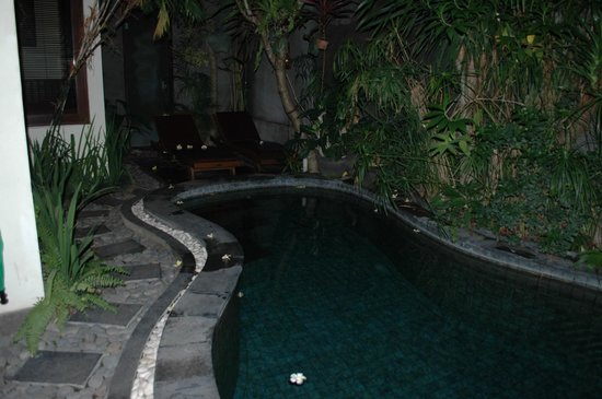The Bali Dream Suite Villa: Kidney shaped swimming pool