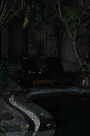 The Bali Dream Suite Villa: pool bench