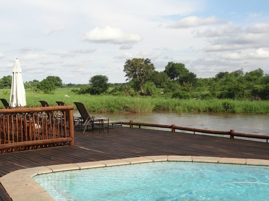 Sabie River Bush Lodge: vue