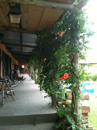 El Galope Farm & Hostel: El Galope