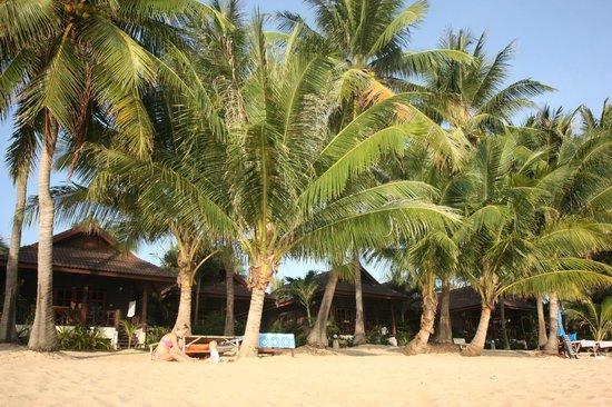 Maenam Resort: Strand mit Bungalows