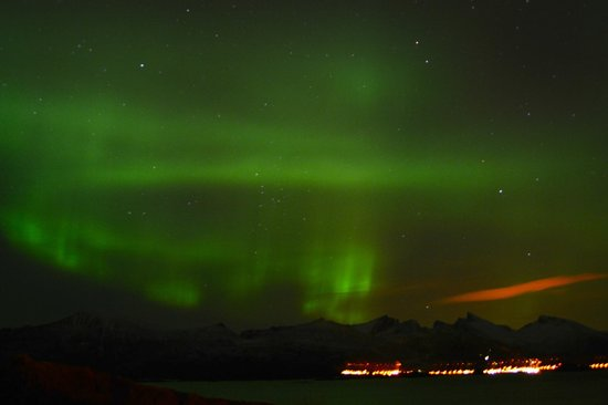 Hamn in Senja: Northern Lights