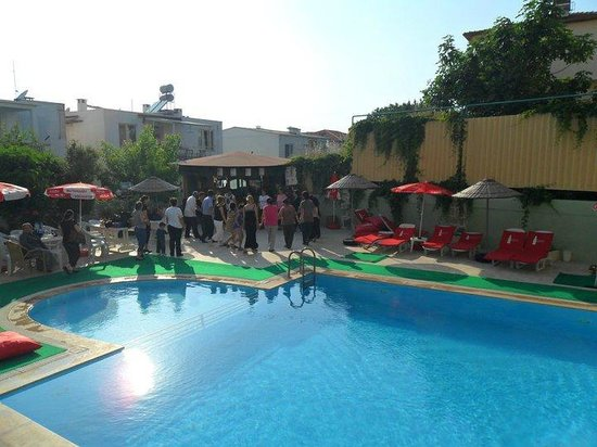 Hotel Albora: pool ve bar