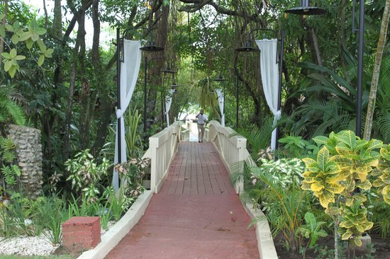 BlueBay Villas Doradas Adults Only: Bridge to Beach