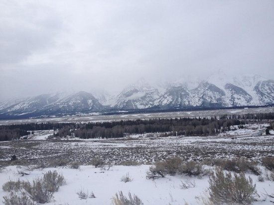White Buffalo Club - Hotel: Tetons surrounding
