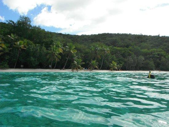 Salomon Beach: Just off shore looking toward beach