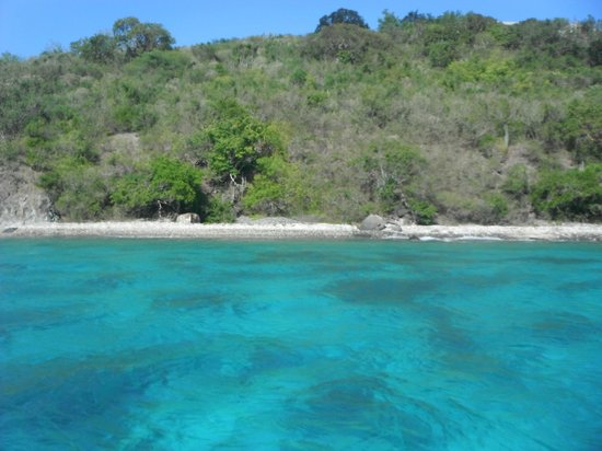 St. John Yacht Charters Survivan: snorkeling spot