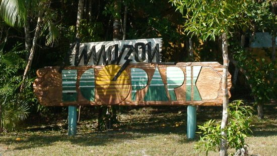 Amazon Ecopark Jungle Lodge: Pub