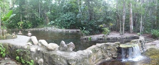 Amazon Ecopark Jungle Lodge: Piscine naturelle
