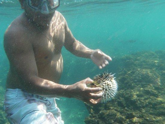 Huatulco Bay: Guide