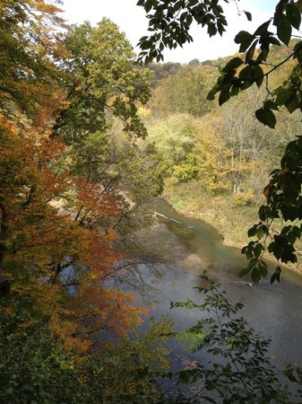 Hocking Hills Canopy Tours: In the trees over the Hocking River
