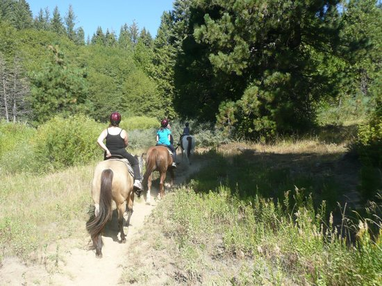 Tenaya Lodge at Yosemite: Horse riding at Tenaya Lodge