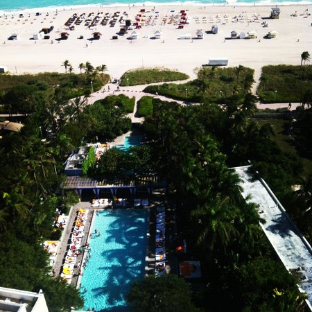 Shore Club South Beach Hotel: TOP VIEW!