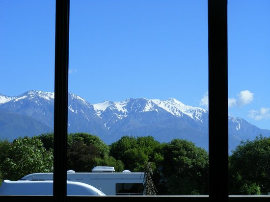Alpine-Pacific Holiday Park: view from the room