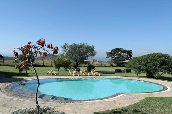 The Pool Picture Of Flamingo Hill Tented Camp Lake Nakuru National Park Tripadvisor