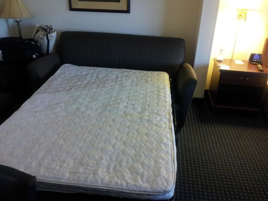 Fairfield Inn & Suites Lynchburg Liberty University: Pull-out bed