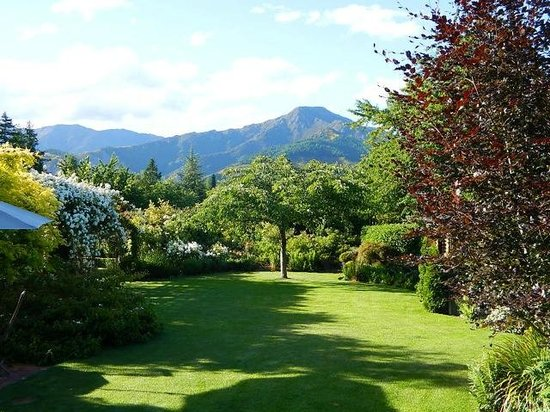 Marchmont Gardens: View from Mt Isoble room over garden